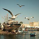 Essaouira Morocco by Louise Fahy