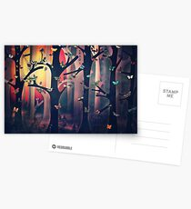 The Woods at Sunset Postcards