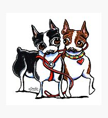 Boston Terrier Walking Buddies Photographic Print