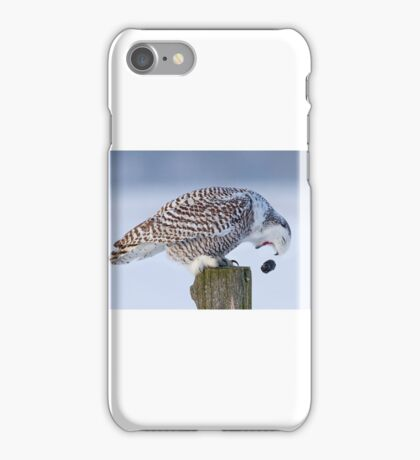 Cough it up buddy - Snowy Owl iPhone Case/Skin