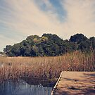 Just to Make This Dock My Home by Laurie Search