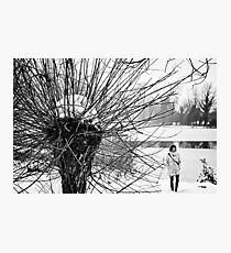 Winter Spikes Photographic Print