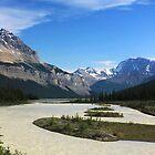 Athabasca River by Charles Kosina