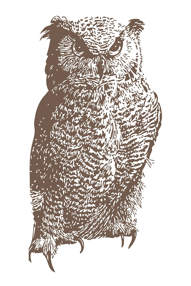 The Great Horned Owl (Bubo virginianus) by Terry Bailey