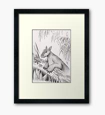 Mythical Creature Framed Print