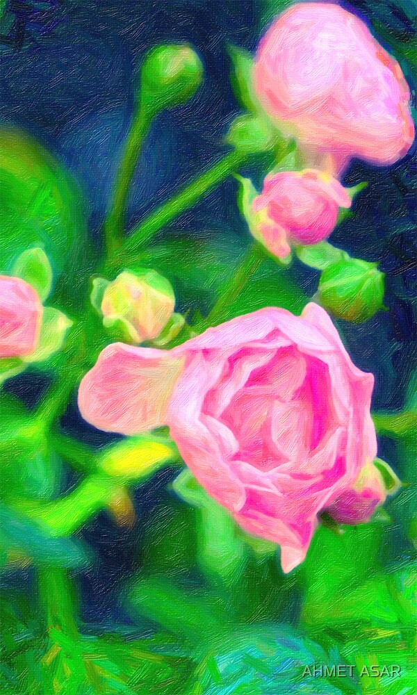 Pink roses by MotionAge Media