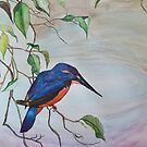 SOUTH AFRICAN KINGFISHER - given as present by Marilyn Grimble