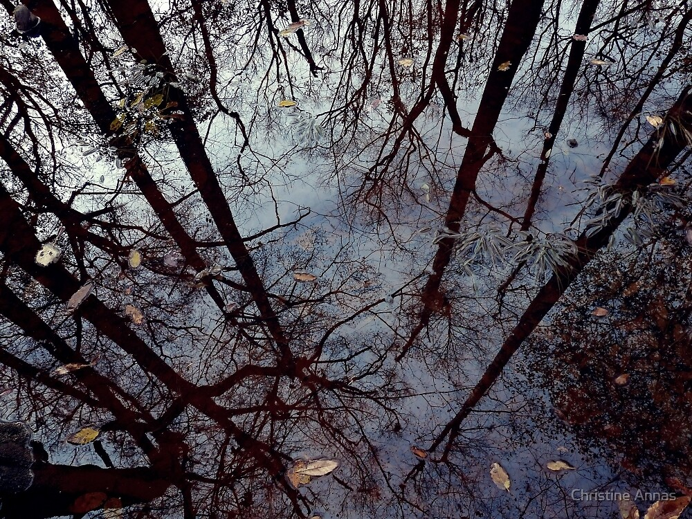 Mirror, Mirror by Christine Annas