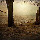 Desperately Seeking . . .  by James L. Brown