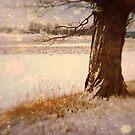 Winter Wonderland by James L. Brown