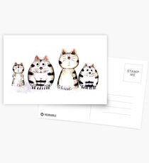 Four funny cats Postcards