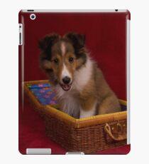 Dog in Box iPad Case/Skin