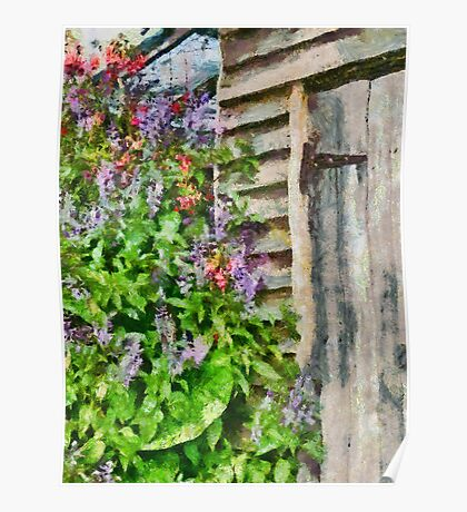 Flowers by the barn door Poster