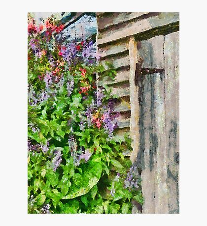 Flowers by the barn door Photographic Print