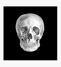 Albinus Skull 01 - Back To The Basic - Black Background Photographic Print