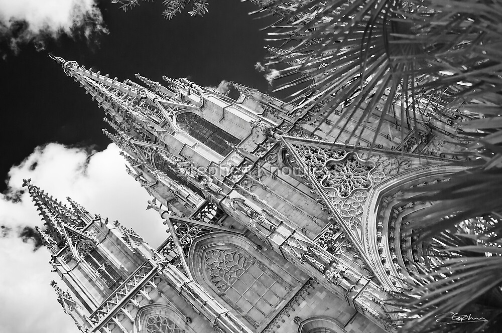 Barcelona Cathedral by Stephen Knowles
