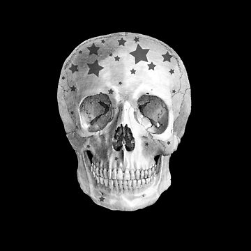 Albinus Skull 06 - Wannabe Star - Black Background by sivieriart