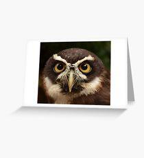 Spectacled Owl Grußkarte