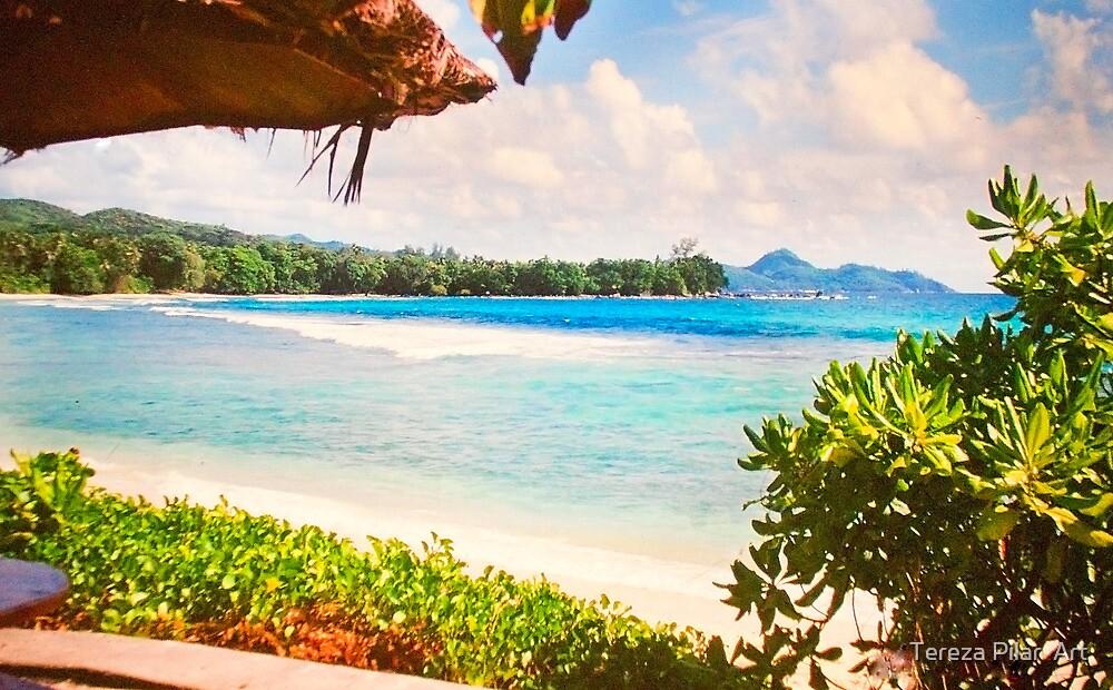 Seychelles. Meridien Barbarons. Indian Ocean. by terezadelpilar ~ art & architecture