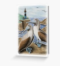 Blue Footed Booby Birds on Cliff Greeting Card