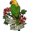 Can't Stop; Won't Stop (jenday conure) by kiriska