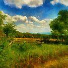 Split Rail Fence by Lois  Bryan