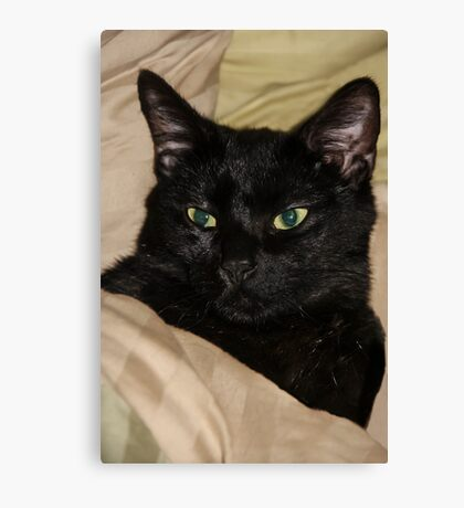 Mummy's Bed Is Best! Canvas Print