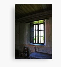 Room Without a View Canvas Print
