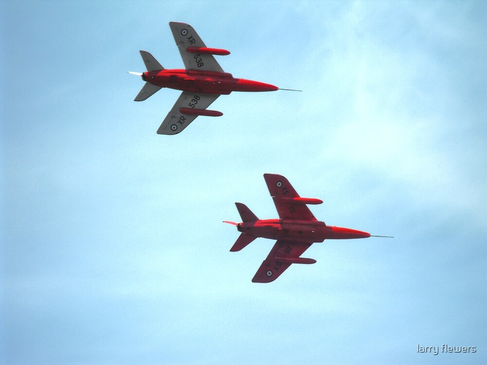 Folland Gnats  by larry flewers