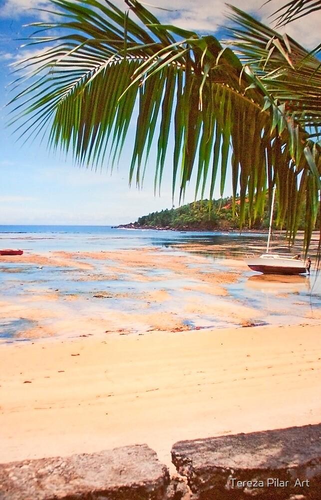 low tide in Seychelles. by terezadelpilar ~ art & architecture