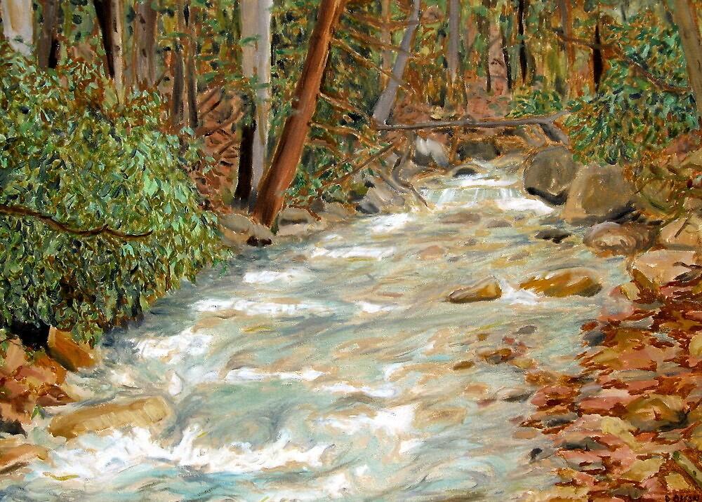 Linn Run, Laurel Ridge, Allegheny Mountains David Olson by David Olson