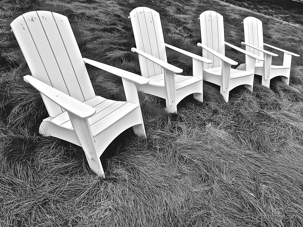 Four Chairs In The Grass Overlooking The Bay  by Scott Johnson