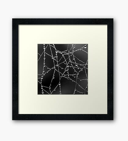 Tear Catcher Framed Print