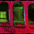 Hacienda Nights by pat gamwell