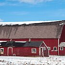 The Barn with the Fancy Silo by gharris