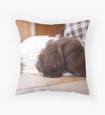 Sleeping Springer Throw Pillow