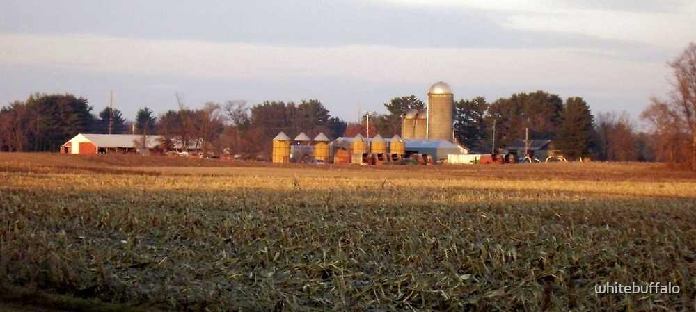 Farms of Wisconsin by whitebuffalo