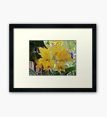 Beautiful in yellow Framed Print