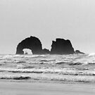 Twin rocks Oregon by Hannah Fenton williams