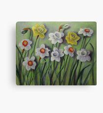 Daffodils Swaying Canvas Print