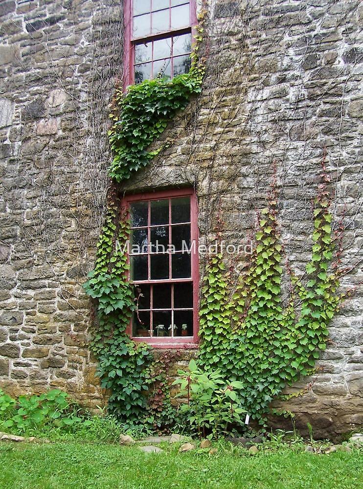 Ivy & Jars by Martha Medford