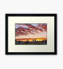 Colorful Sonoran Desert Sunrise Framed Print