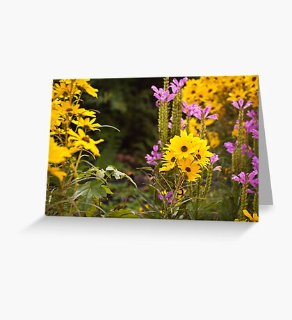 Fall Flowers Greeting Card