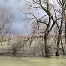River Sava On The March by branko stanic