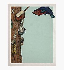 Bird House Photographic Print