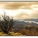 Orrest head,Windermere by beanocartoonist