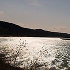 Missouri River at Pickstown by Scott Hendricks