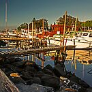 Fishing Fleet Greet Sunset by bazcelt