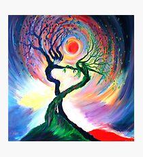 'Dancing tree spirits' by annie b. Photographic Print