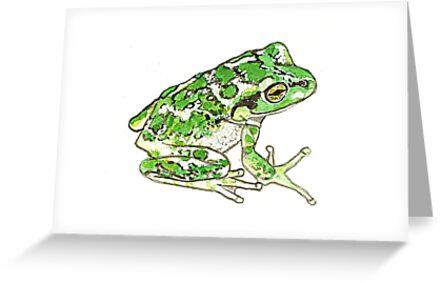 Juvenile Motorbike Frog by thedrawingroom